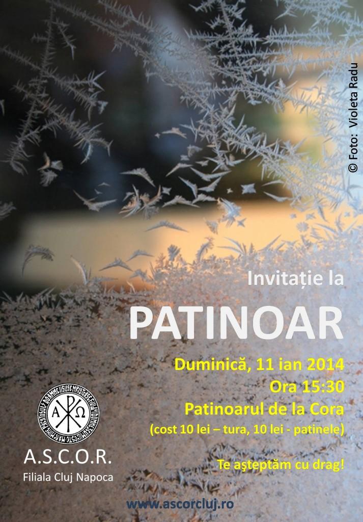 patinoar